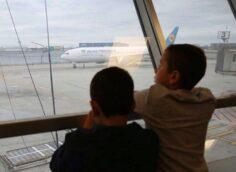 Украинскому премьеру пришлось объясняться, почему авиакомпания не отменила рейс Тегеран-Киев