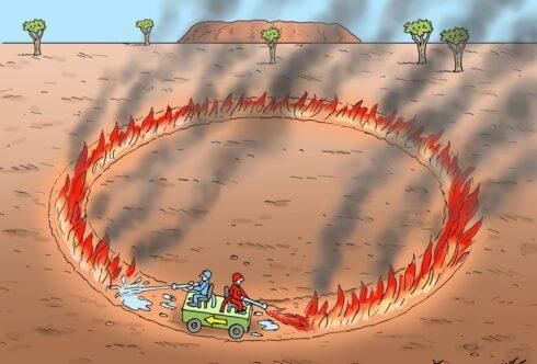 Пожары в Австралии. Ответы на вопросы