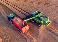Бесспорный успех: отечественные аграрии двигают экономику РФ вперед